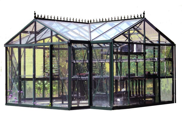 Royal Victorian Orangerie Glass Greenhouse Epic Greenhouses