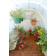 Solexx_Early_Bloomer_interior