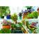 Solexx Gardeners Oasis Interior