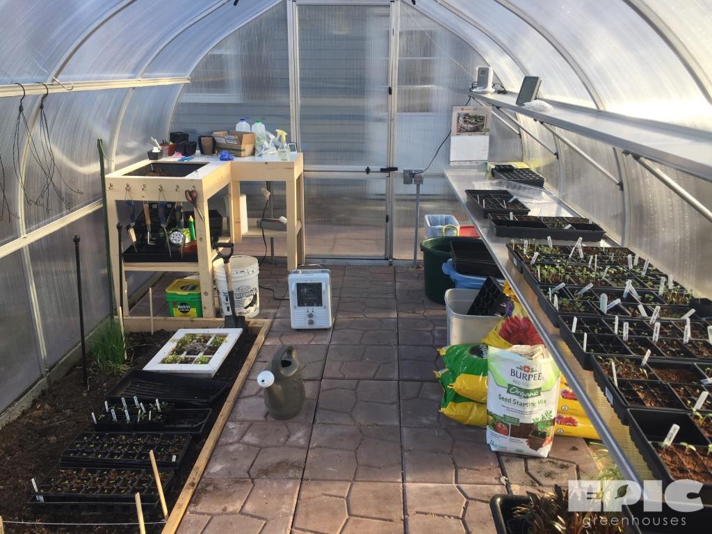 riga backyard greenhouse